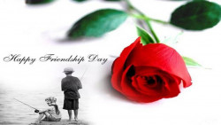 Friendship Day Wallpaper Red Rose