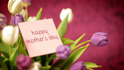 Mom Love Happy Mothers Day Wallpapers