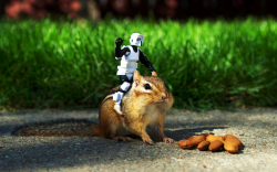 Robot and Squirel Funny HD Wallpaper