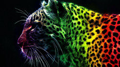 3D Colorful Tiger