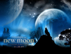 twilight twilight series wallpaper 1024 768