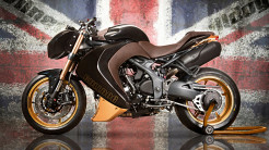 Vilner Triumph Speed Triple Bulldog   7