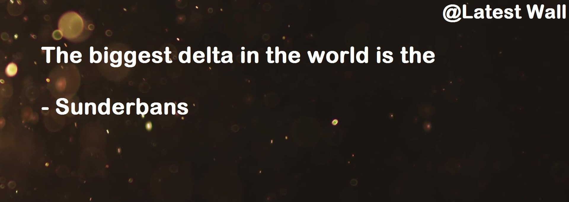 The biggest delta in the world is the