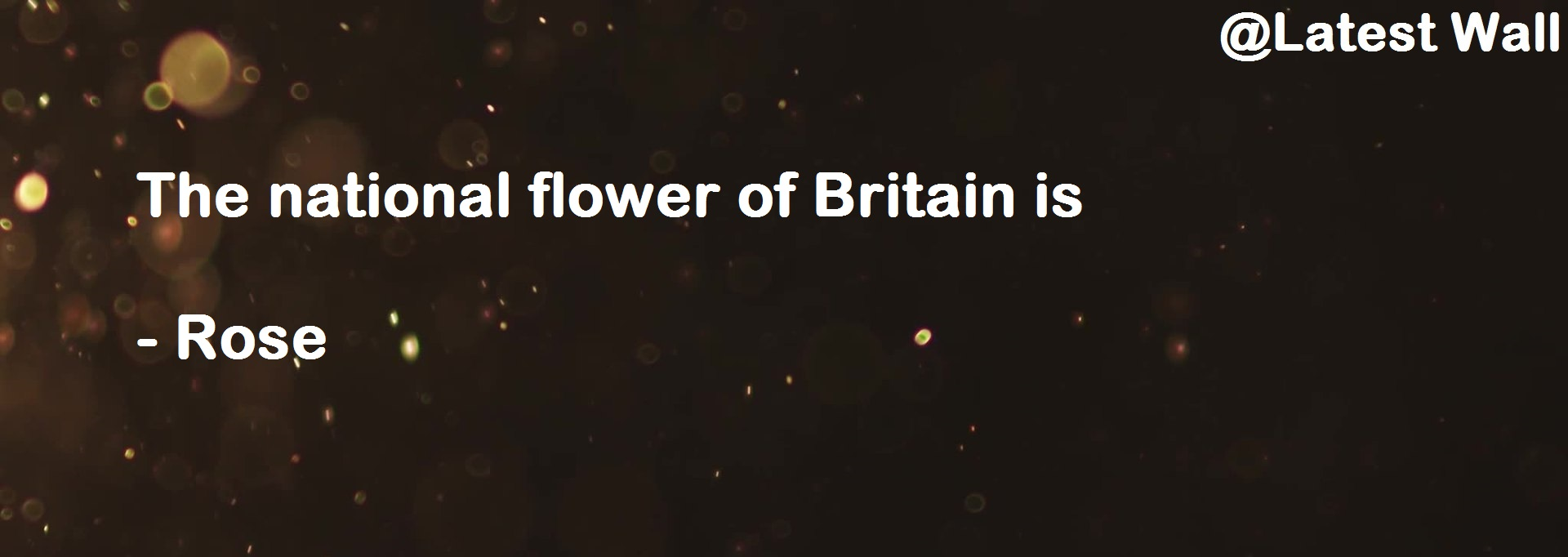 The national flower of Britain is