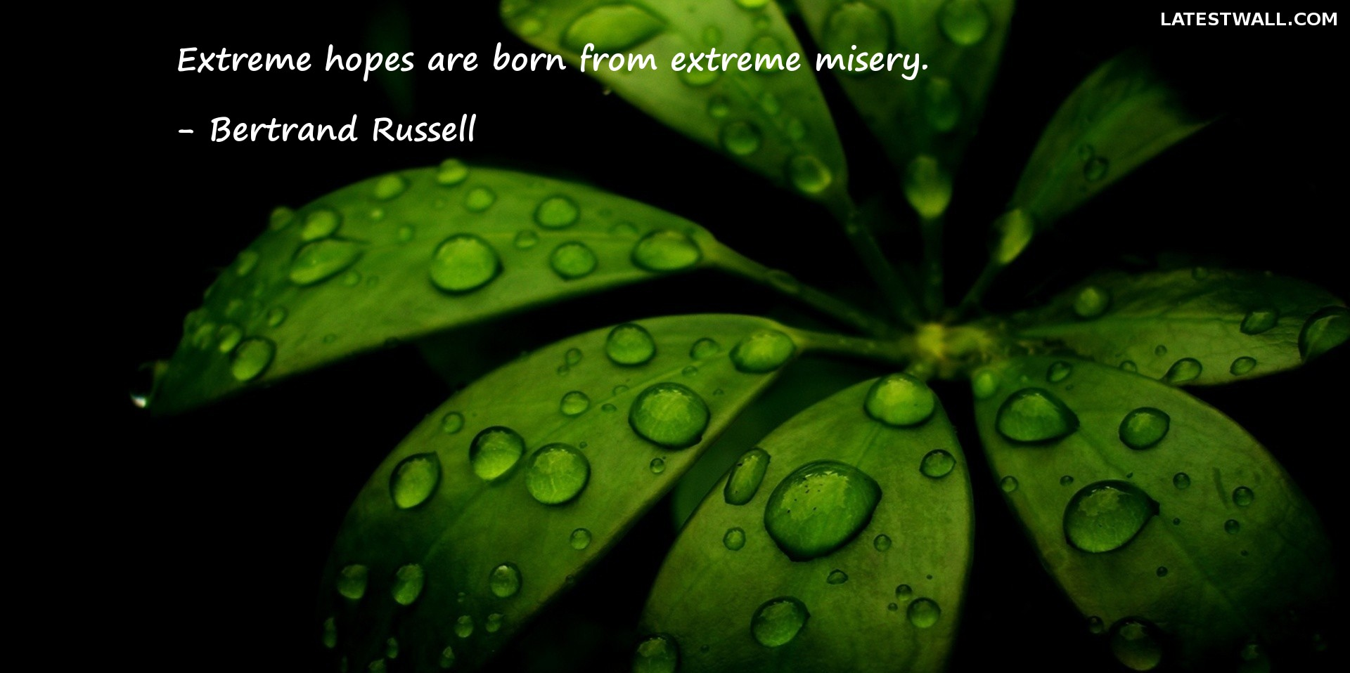 Extreme hopes are born from extreme misery.