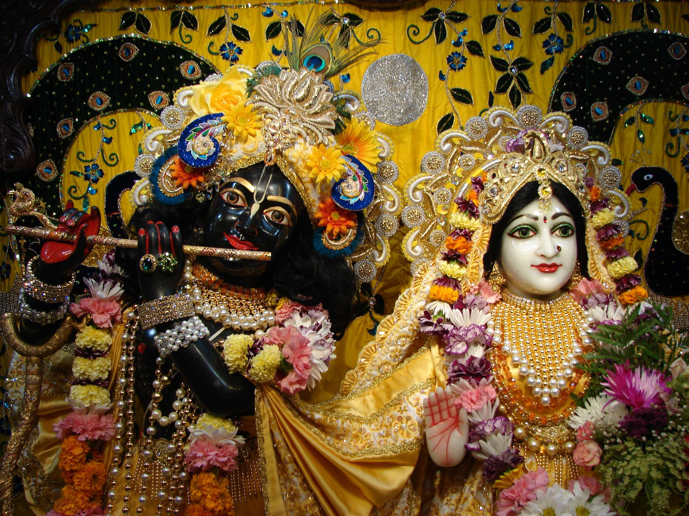 download best full size more wallpapers radha krishna