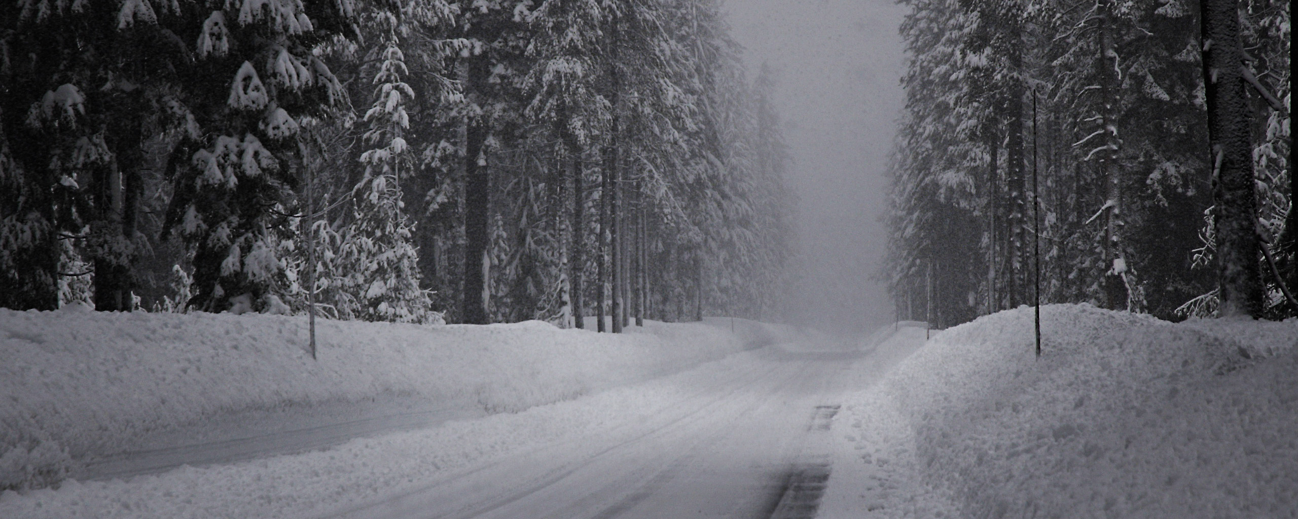 Download Best winter road 2560x1024 Wallpapers & Images Free | LatestWall