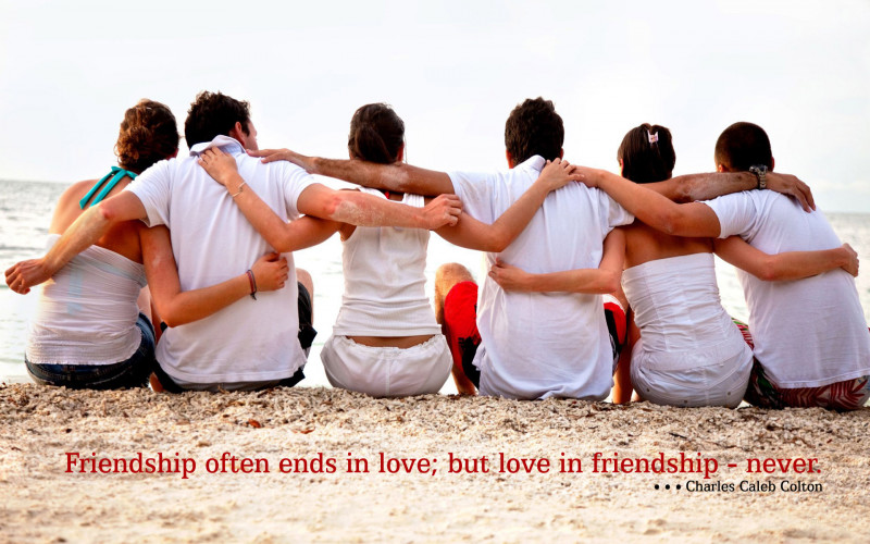 friends are forever happy friendship day HD Wallpaper