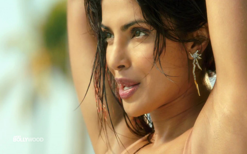Priyanka Chopra hot in Pitbull song